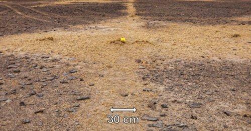 Google Earth fans stunned to uncover mysterious 30-mile artwork hidden in desert