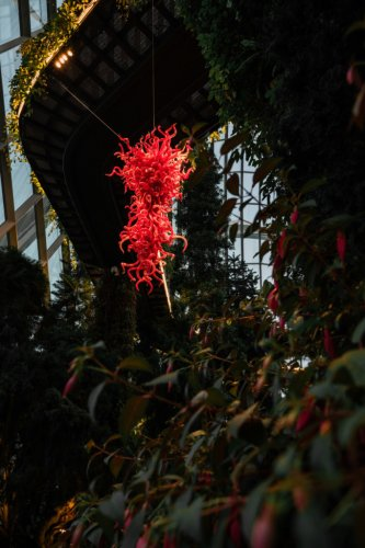 Perfect for the 'Gram and the Soul: See 'Glass in Bloom' Exhibition at Gardens by the Bay!