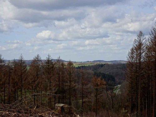 MTB Tour rund um Wipperfeld: Mountainbiken im Bergischen Land: