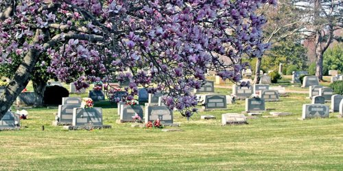 Feds Sue Stafford County Over Law Blocking Islamic Cemetery