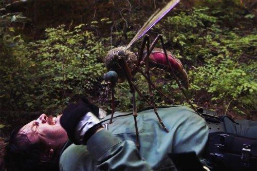 "'Creepshow' Season 2 Episode 2 Review: ""Dead & Breakfast"" + ""Pesticide"""