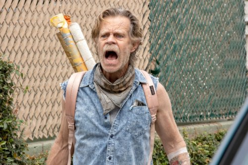 7 Shows Like 'Shameless' If You Loved the Showtime Series