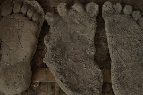 Stream It Or Skip It: 'Sasquatch' On Hulu, A Docuseries About Bigfoot Sightings And Violent Crime In California's Emerald Triangle