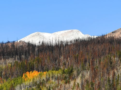 Happy fall, y'all! Denver's first freeze and first snow are coming up faster than you think
