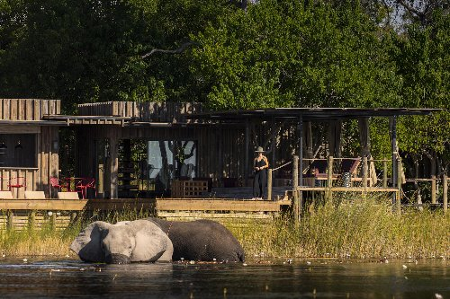 New Botswana Lodges Are Perfect for Elephant Herd Spotting