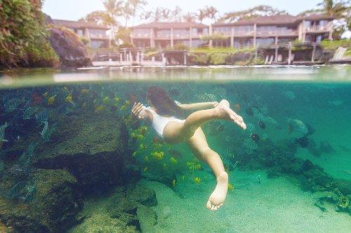 Four Seasons Resort Hualālai Has a 1.8-Million-Gallon Swimmable Aquarium