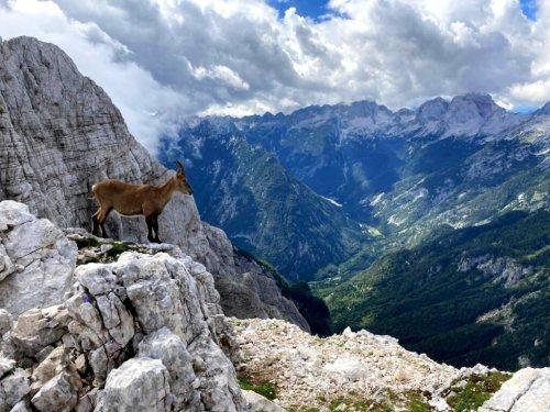 Wandern im Triglav-Nationalpark: Grandiose Mehrtagestour für Bergfans