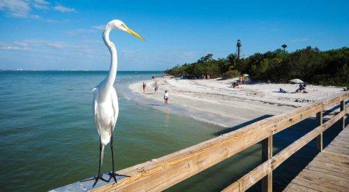 Auf in die schönste Ecke Floridas im Fort Myers Podcast