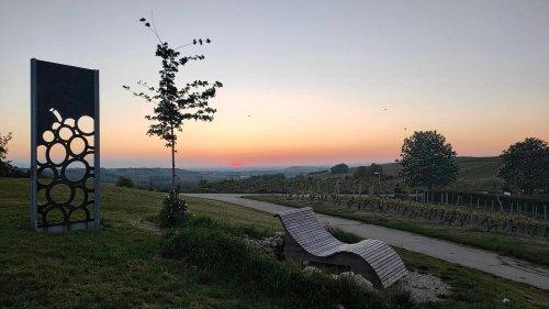 Schönste Weinsicht 2020 Rheinhessen – Sonnenaufgang über Frankfurt