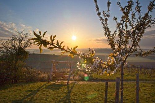 Morgendliche Frühlingssonne über der Schaukel am Petersberg #Fotomontag 21/16