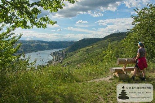 In Vino Veritas – Wisper Trail bei Lorch