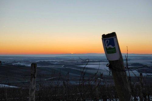 Hiwweltour Zornheimer Berg mit Schmackes 🌞🌞🌞