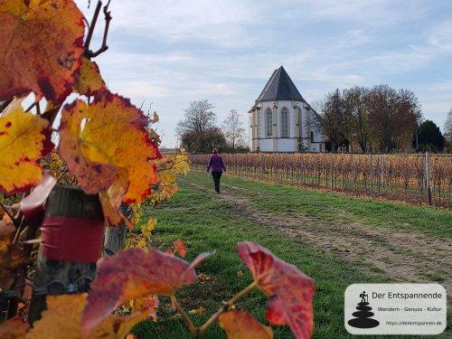 Via Natura Hahnheim und zur Bergkirche Udenheim