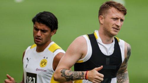 Borussia Dortmund macht es offiziell – darauf haben die Fans lange gewartet