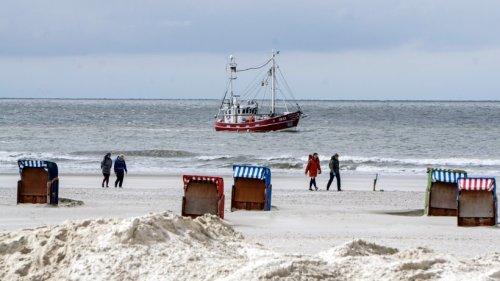 """Urlaub an der Nordsee: Frau will zu ihren Tieren gehen und ist sprachlos – """"Unfassbar"""""""