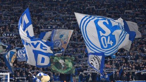 """FC Schalke 04: Versöhnliche Worte der Ultras – """"Nicht viel zu meckern"""""""
