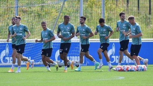 FC Schalke 04: Homepage enthüllt Details für die neue Saison! Diese Infos will jeder Fan wissen