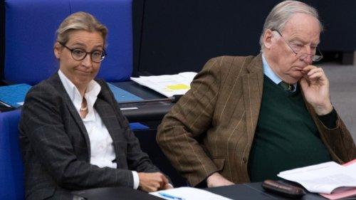 """AfD im Bundestag: Einige Abgeordnete müssen auf Besuchertribüne sitzen – """"Trotzphase?"""""""