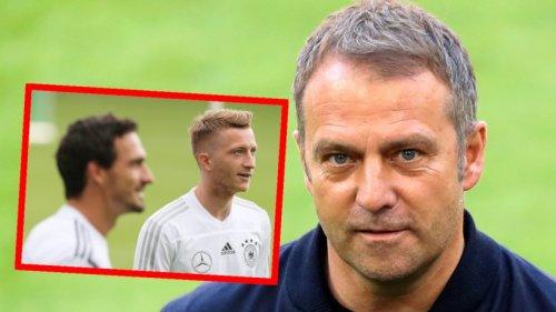 Borussia Dortmund: Flick spricht erstmals als Bundestrainer – bei DIESEM Satz hören Reus und Hummels ganz genau hin