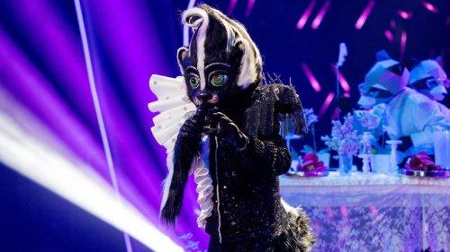 """""""Das Stinktier"""" bei """"The Masked Singer"""": Fans sind sich sicher – ER ist es"""
