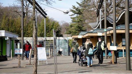 Zoo Duisburg nimmt Abschied – mit der Haltung dieser Tiere ist jetzt Schluss