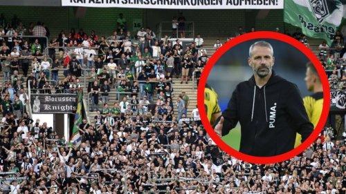 """Borussia Mönchengladbach – Borussia Dortmund: Böse Schmäh-Plakate gegen BVB-Coach Rose – """"Charakterloses Schwein"""""""