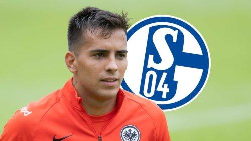 FC Schalke 04 verkündet lang ersehnten Transfer – ein Detail überrascht