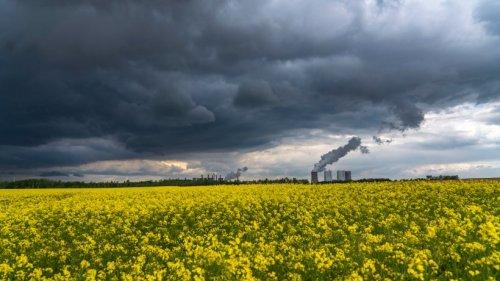 Wetter in NRW: Aufgepasst, heftiger Sturm zieht auf! Doch das ist noch längst nicht alles