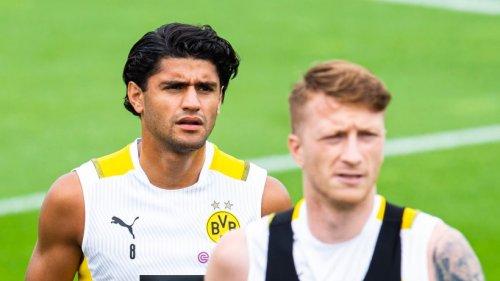 Borussia Dortmund: Verein macht es offiziell – darauf haben die Fans lange gewartet