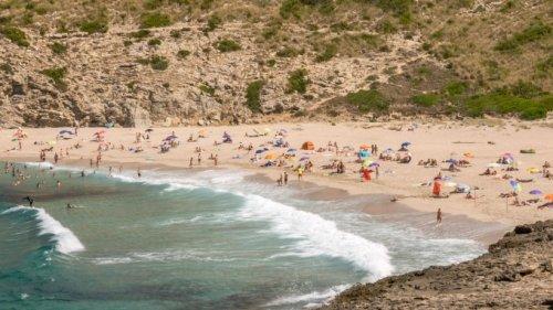 Urlaub auf Mallorca: Bis zu 600 Euro Strafe! DIESE Ausflüge können dich teuer zu stehen kommen