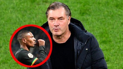 Borussia Dortmund: Ex-Bundesliga-Star im Anflug? Trainer mit klarer Ansage an den BVB