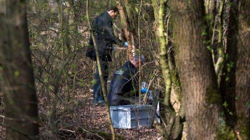 NRW: Nach Leichenfund im Wald! Polizei nimmt Verdächtigen fest