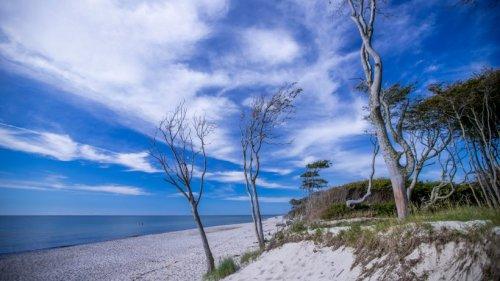 """Urlaub an der Ostsee: Touristen sind auf beliebter Insel geplagt! """"Ganz schlimm"""""""