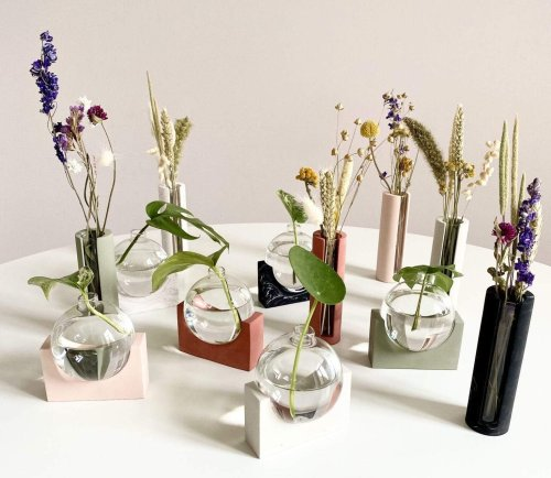 Propagating in Style: Grow Your Plant Cuttings With These Modern Vessels
