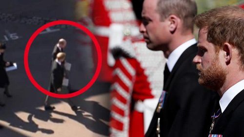 Prince Harry and William's Conversation EXPOSED by a Lip Reader