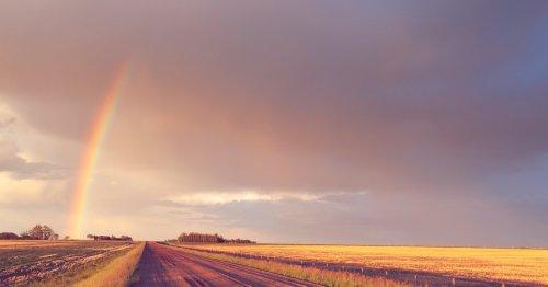 Siebenschläfer 2021: Entscheidet dieser Tag, wie das Sommerwetter wird? | desired.de