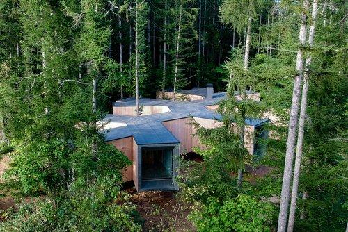 Verästelt: Wohnhaus in Hokkaido von Florian Busch Architects