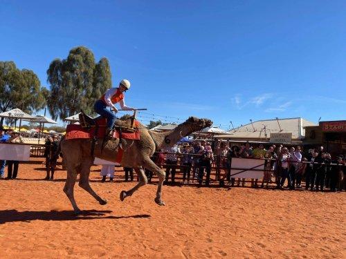 Abenteuer Australien | Kamele – Auf dem Höcker durchs Outback | detektor.fm – Das Podcast-Radio