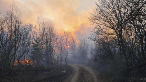 Tschernobyl-Sperrzone - Immer wieder Waldbrände um den explodierten Atomreaktor