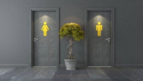 Kritik am Konstruktivismus - Wie viel Natur steckt im Geschlecht?
