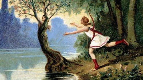 Die Dafne-Oper des Marco da Galgiano - Die Flucht der schönen Nymphe