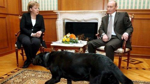"Keine Angst vor Putins ""Testosteron-Leadership"""
