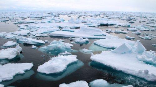 Bleispuren im arktischen Meer