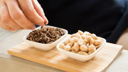 Gelbe Mehlwürmer als Snack oder Beilage in Nudeln