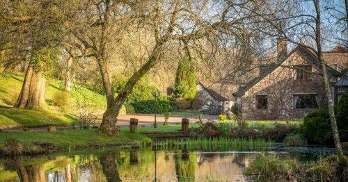 Three areas of Devon have seen no coronavirus deaths