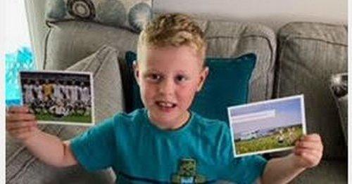 Boy's beloved lost bunny goes globetrotting