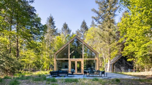Woonpioneers hides prefabricated Indigo cabin within Dutch forest