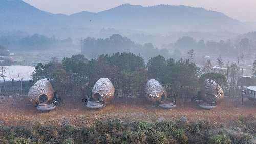 The Seeds are a group of shingle-clad pods nestled in a Chinese forest