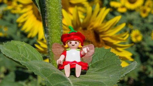 Feria de Clicks de Playmobil en el Sevilla Factory de Dos Hermanas