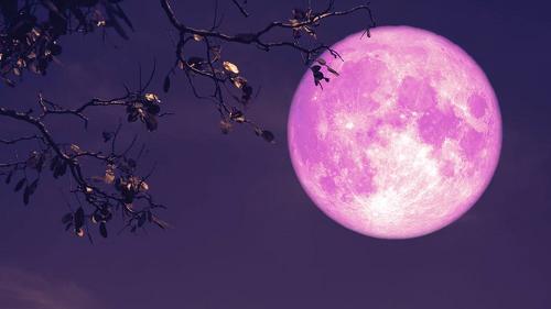 Luna de fresa: Los rituales para atraer la buena suerte y el amor en la última Superluna de 2021